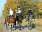 W Opatówku można uprawiać jazdę konną. Fot. J. Miluśka-Stasiak
