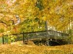 Zabytkowy mostek w parku w Opatówku