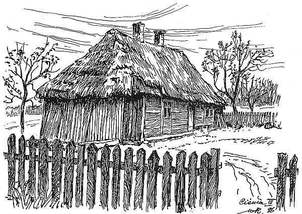 Cienia III - drewniany dom